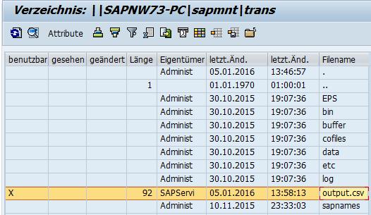 Datei wird im SAP Verzeichnis angelegt